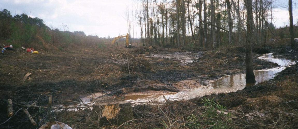 Solusi Bioremediasi & Penanganan Oil Spill