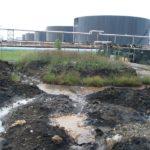 Oil Gator Trial UP II Dumai-4